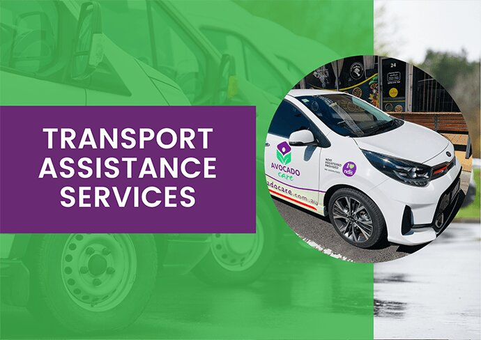 transport-assistant-services-edited-min